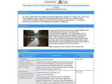The Impact of the Physical Environment on Stream Macroinvertebrates Lesson Plan