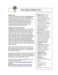 The Kapok (Ceiba) Tree Lesson Plan
