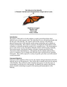 The Lifecycle of the Butterfly Lesson Plan