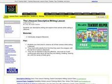 The Lifesaver Descriptive Writing Lesson Lesson Plan