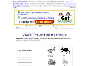 The Long and the Short!: a Worksheet