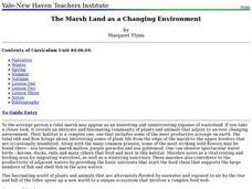 The Marsh Land as a Changing Environment Lesson Plan