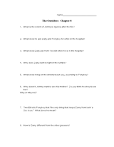 The Outsiders: Chapter 8 Lesson Plan