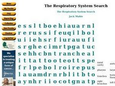 The Respiratory System Search Worksheet