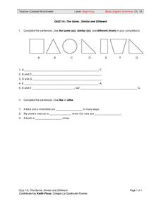 The Same, Similar, and Different Worksheet