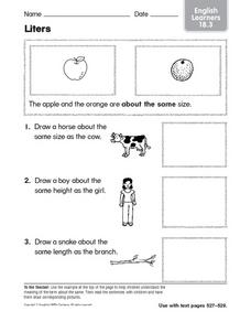 The Same Size: ELL Activity Worksheet