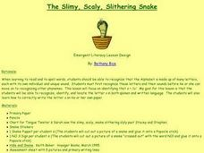 The Slimy, Scaly, Slithering Snake Lesson Plan