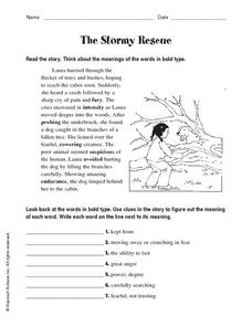 The Stormy Rescue Worksheet