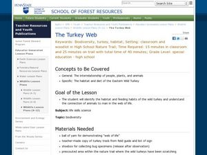 The Turkey Web Lesson Plan