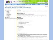 Third Grade Writing Lesson #2/Science Project Lesson Plan