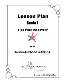 Tide Pool Discovery Lesson Plan