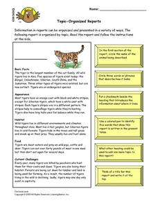 Topic-Organized Reports Lesson Plan