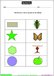 Trace a Line of Symmetry Worksheet
