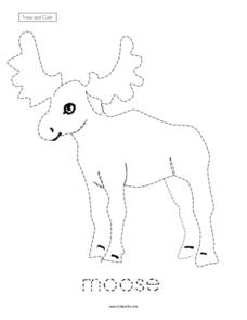 Trace and Color: Moose Worksheet