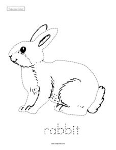 Trace and Color: Rabbit Worksheet