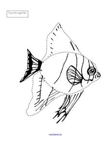 Trace the Angel Fish Worksheet