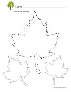 Tracing Leaves Lesson Plan