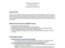 Translation and Proteins Lesson Plan