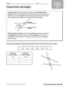 Transversals and Angles - EL 14.3 Worksheet