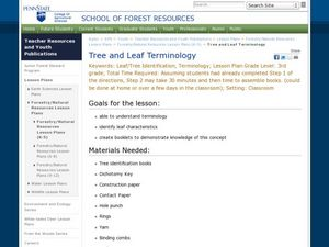 Tree and Leaf Terminology Lesson Plan