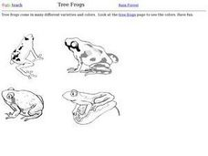 Tree Frogs Worksheet