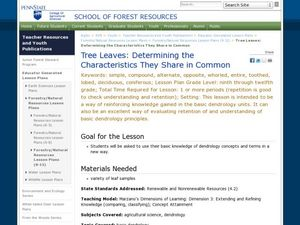 Tree Leaves: Determining the Characteristics They Share in Common Lesson Plan