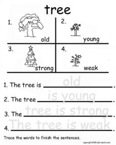 Tree Opposites With Tracing Worksheet