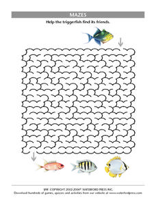 Trigger Fish Maze Worksheet