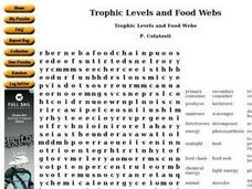 Trophic Levels and Food Webs Worksheet