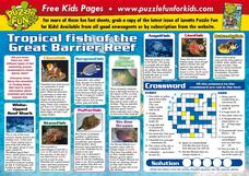 Tropical Fish of the Great Barrier Reef Lesson Plan