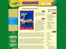 Tropical Island Lesson Plan