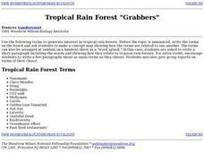 "Tropical Rain Forest ""Grabbers"" Lesson Plan"