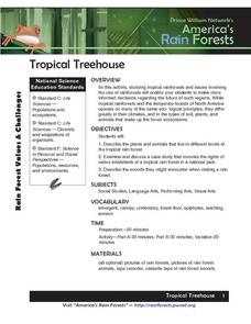 Tropical Treehouse Lesson Plan