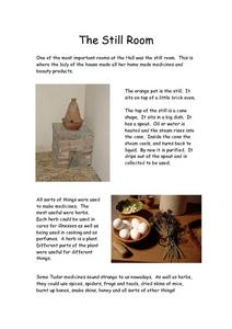 Tudor Homes- The Still Room and Herb Garden Worksheet