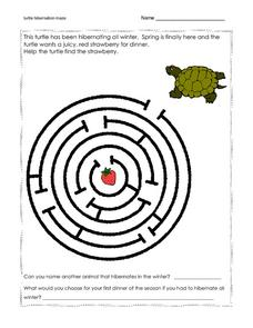 Turtle Hibernation Maze Worksheet