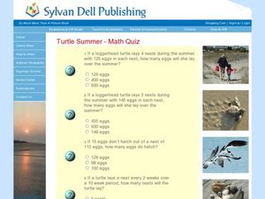 Turtlehead Summer - Math Quiz Worksheet