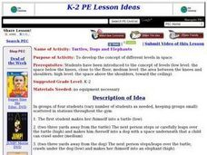 Turtles, Dogs, and Elephants Lesson Plan