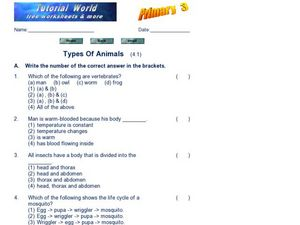 Types of Animals (4.1) Worksheet