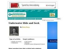 Underwater Hide and Seek Lesson Plan