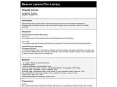 Uniquely Leaves Lesson Plan