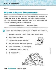 Unit 6 Grammar - More About Pronouns Worksheet