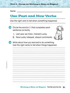 Use Past and Now Verbs Worksheet