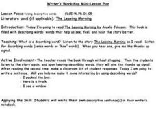 Using Descriptive Words Lesson Plan