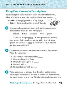 Using Exact Nouns in Descriptions Worksheet
