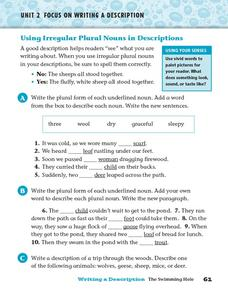 Using Irregular Plural Nouns in Descriptions Worksheet