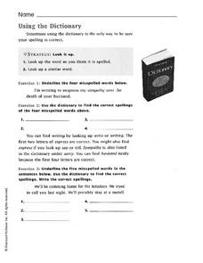 Using the Dictionary Worksheet
