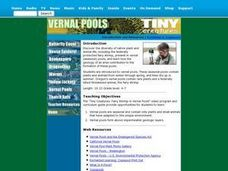 Vernal Pools Lesson Plan