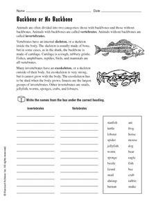 Printables Vertebrates And Invertebrates Worksheets vertebrates and invertebrates backbone or no 4th 5th worksheet