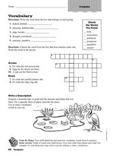 Vocabulary: Everglades Worksheet