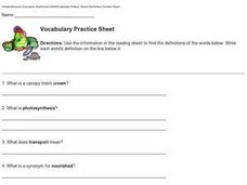 Vocabulary Practice Sheet - Finding Definitions Worksheet